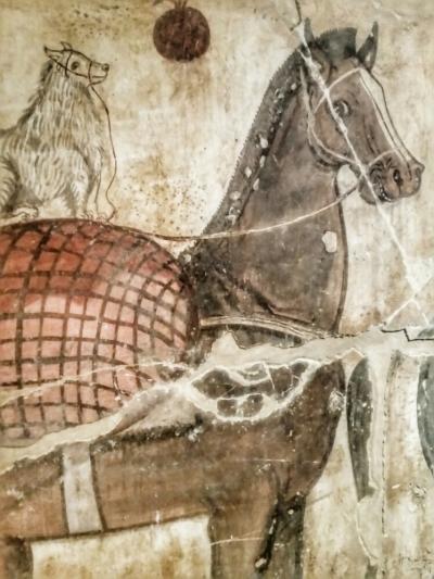 Un cane di razza maltese in groppa ad un cavallo: indica il rango sociale elevato del proprietario della tomba